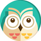 Medium_main-owl-small